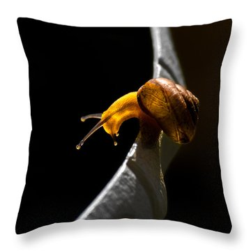 It's Dark Down There Throw Pillow