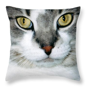 It's In The Cat Eyes Throw Pillow