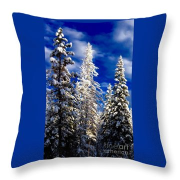 Its Now Crystal Clear Throw Pillow by Jennifer Lake