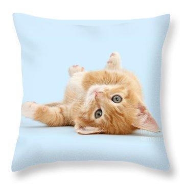 It's Sunday, I'm Feeling Lazy Throw Pillow