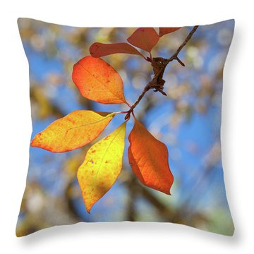 Throw Pillow featuring the photograph It's Time To Change by Linda Unger