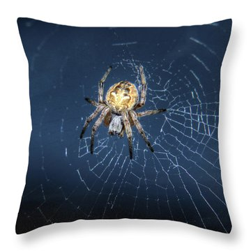 Itsy Bitsy Spider Throw Pillow