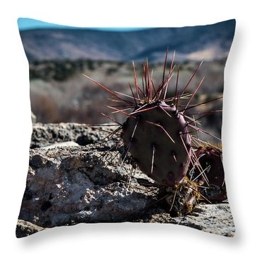 Itty Bitty Prickly Pear Cactus Throw Pillow