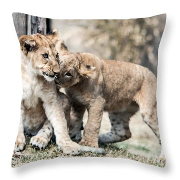 I've Got A Secret Throw Pillow by Cathy Donohoue