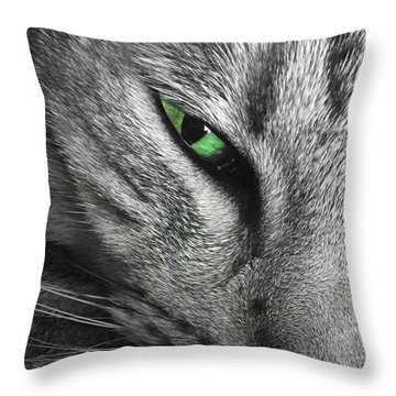 I've Got My Eye On You.  Throw Pillow