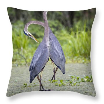 I've Got Your Back Throw Pillow by Betsy Knapp