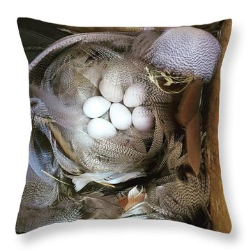 Tree Swallow Nest Of Feathers Throw Pillow by Heidi Hermes