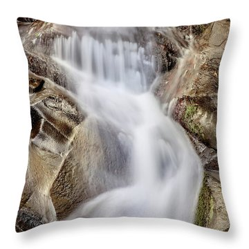 Ivory And Bronze  Throw Pillow by Az Jackson