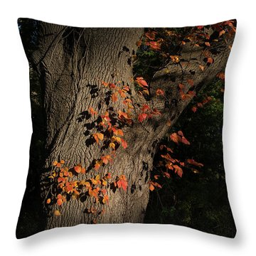 Ivy In The Fall Throw Pillow