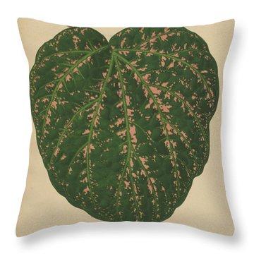 Leaf Venation Throw Pillows