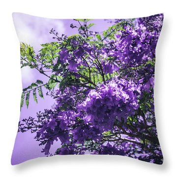 Throw Pillow featuring the photograph Jacaranda Mimosifolia Kula Maui Hawaii by Sharon Mau
