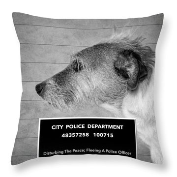 Jack Russell Terrier Mugshot - Dog Art - Black And White Throw Pillow by SharaLee Art