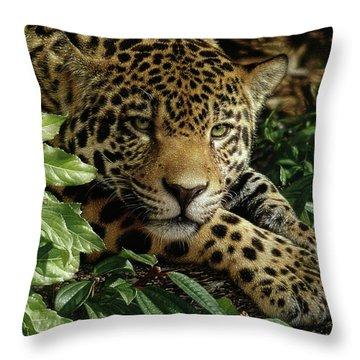 Jaguar - At Rest Throw Pillow