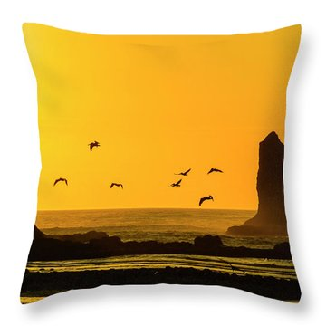 James Island And Pelicans Throw Pillow