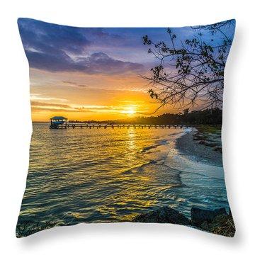 James Island Sunrise - Melton Peter Demetre Park Throw Pillow
