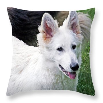 Janie As A Pup Throw Pillow