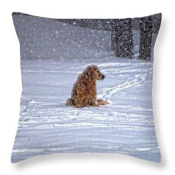 January Blizzard Throw Pillow by Elizabeth Dow