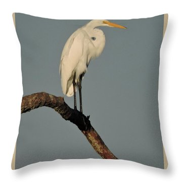 January Egret Throw Pillow