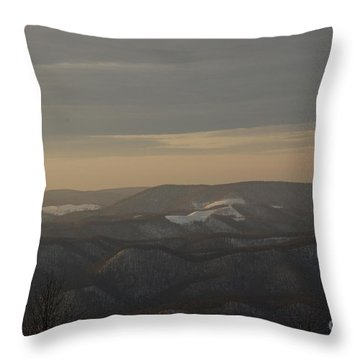 January Evening Throw Pillow by Randy Bodkins