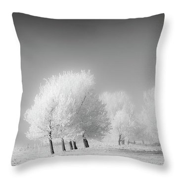January Frost Throw Pillow by Dan Jurak