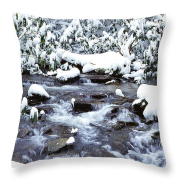 January In West Virginia Throw Pillow by Thomas R Fletcher