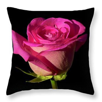January Rose Throw Pillow by Gary Dean Mercer Clark