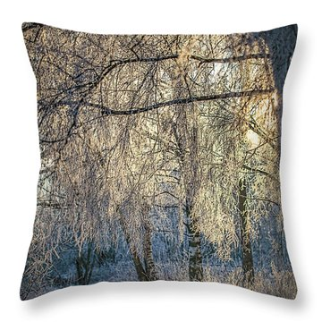 January,1-st, 14.35 #h4 Throw Pillow