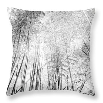 Japan Landscapes Throw Pillow