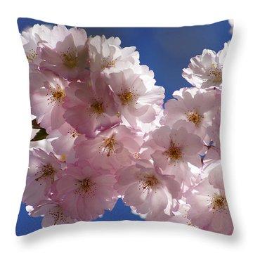 Japanese Flowering Cherry Prunus Serrulata Throw Pillow