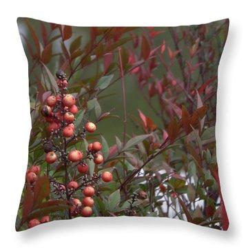 Japanese Garden Plants Throw Pillow