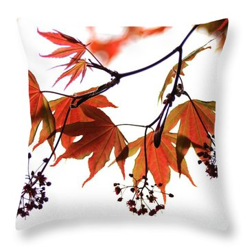 Japanese Maple 2011-2 Throw Pillow