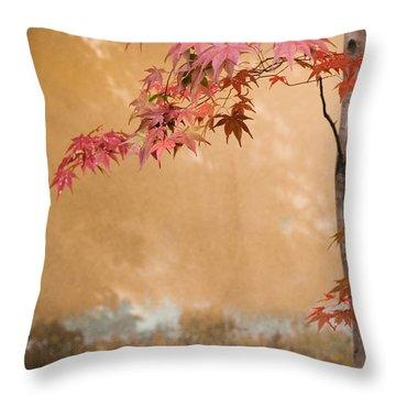 Kansai Region Throw Pillows