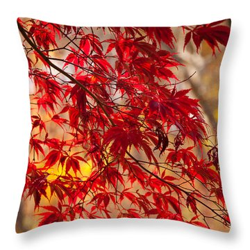 Japanese Maples Throw Pillow by Susan Cole Kelly