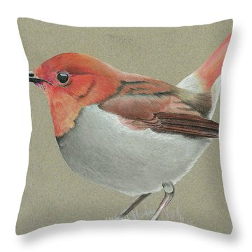 Japanese Robin Throw Pillow by Gary Stamp