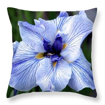 Japanese Water Iris In Blue 2695 H_3 Throw Pillow