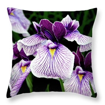 Japanese Water Iris In Purple 2714 H_2 Throw Pillow