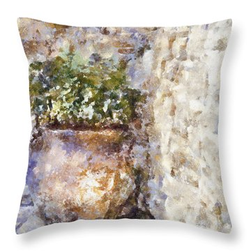 Jardiniere Throw Pillow by Shirley Stalter