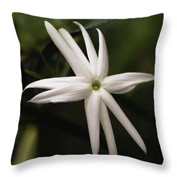 Throw Pillow featuring the photograph Jasmine Flower by Cristina Stefan