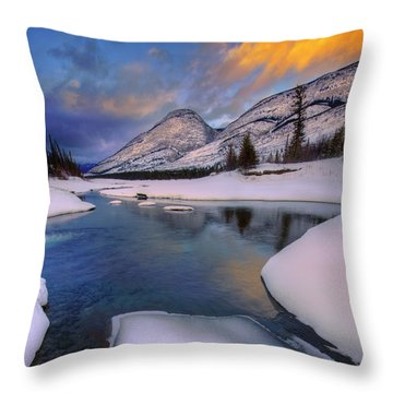 Jasper In The Winter Throw Pillow by Dan Jurak