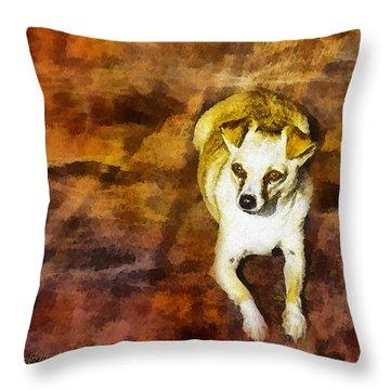 Throw Pillow featuring the photograph Jasper by Rhonda Strickland