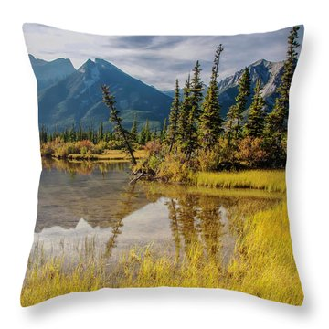 Jasper Wetlands 2009 02 Throw Pillow