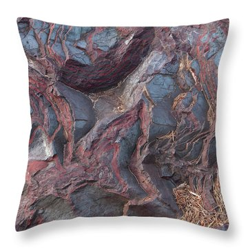Jaspilite Throw Pillow