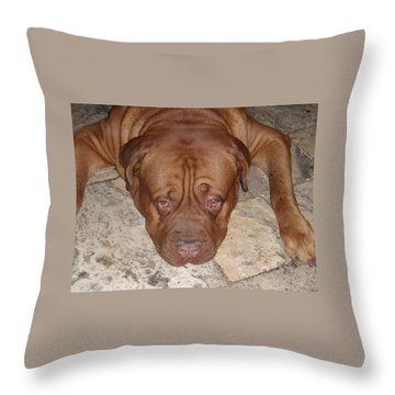 JAX Throw Pillow by Val Oconnor