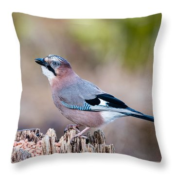 Jay In Profile Throw Pillow