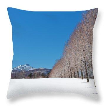 Jay Peak Winter Landscape Throw Pillow