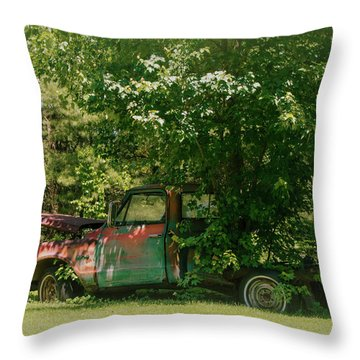 Jeferson Landing Series No.2 Throw Pillow by Laura DAddona