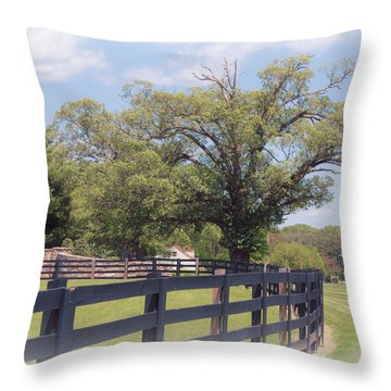 Jefferson Landing Series No. 1 Throw Pillow by Laura DAddona