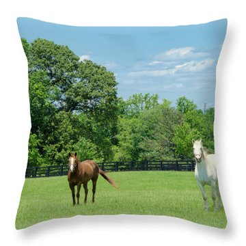 Jefferson Landing Series No. 3 Throw Pillow by Laura DAddona
