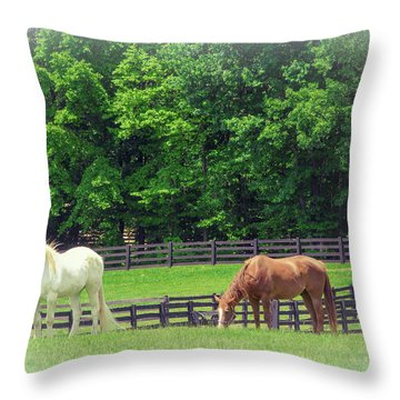 Throw Pillow featuring the photograph Jefferson Landing Series No. 5 by Laura DAddona