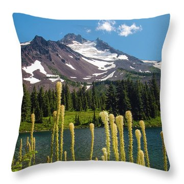 Jefferson Park Throw Pillow